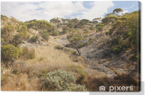 Tableau sur toile Plaine de Nullarbor, en Australie occidentale - Océanie