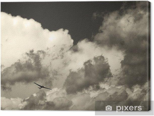 Tableau sur toile Planeur dans la tempête - Autres sentiments
