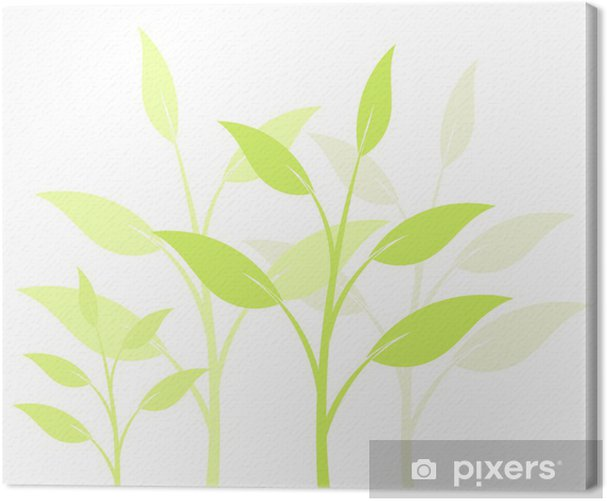 Tableau sur toile Plantes de fond - Plantes