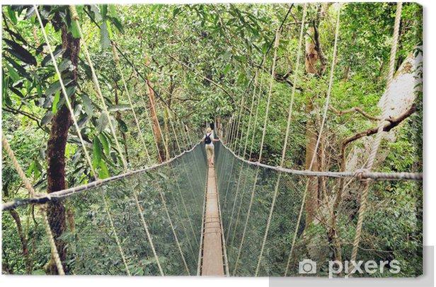 Tableau sur toile Pont suspendu à des cordes jungle - Thèmes