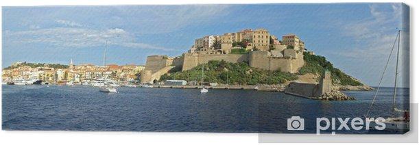 Tableau sur toile Port de Calvi Corse1 - Europe
