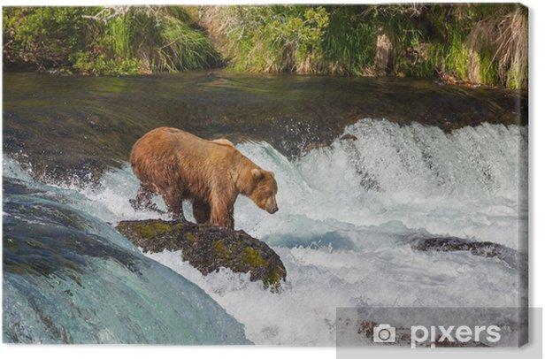 Tableau sur toile Porter sur l'Alaska - Thèmes