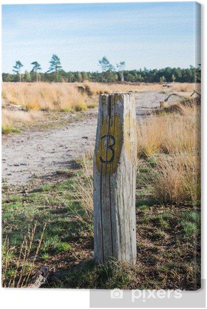 Tableau sur toile Poteau en bois a mûri dans un paysage de la nature automnale - Saisons