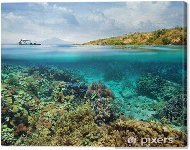 Tableau sur toile Récif de corail sur l'île de Menjangan. Indonésie - Récif de corail