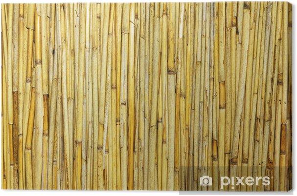 Tableau sur toile Reed fond - Textures