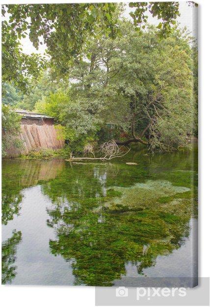 Tableau sur toile Reflet de l'arbre vert - Nature et régions sauvages