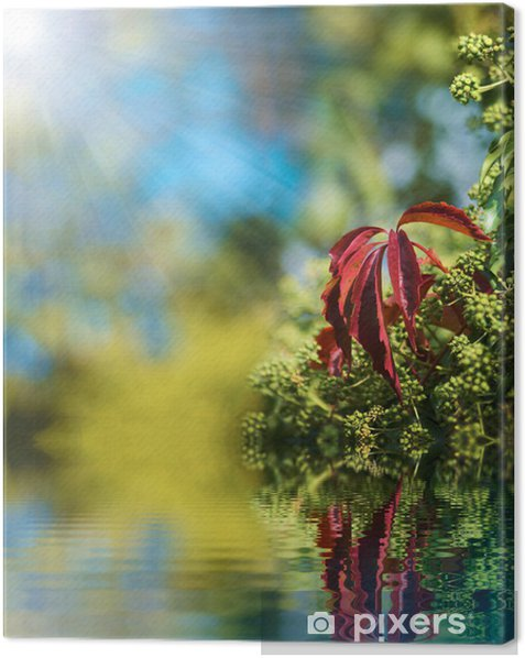 Tableau sur toile Reflétant dans l'eau 2 - Plantes