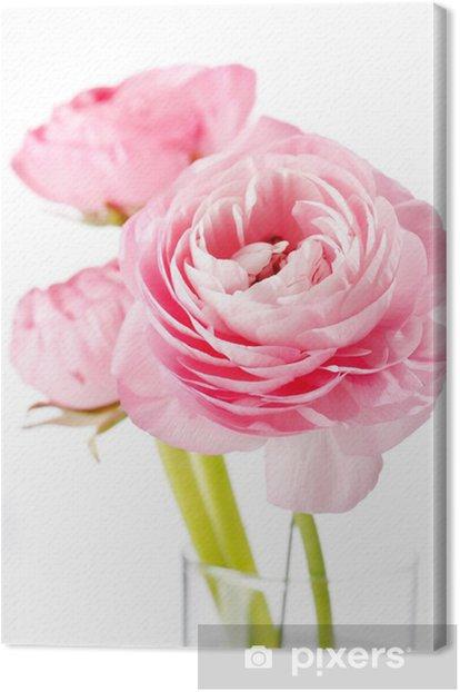 Tableau sur toile Renoncule rose .. - Fleurs