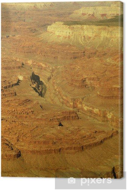 Tableau sur toile Reptiles Merika Arizona canyon - Amérique
