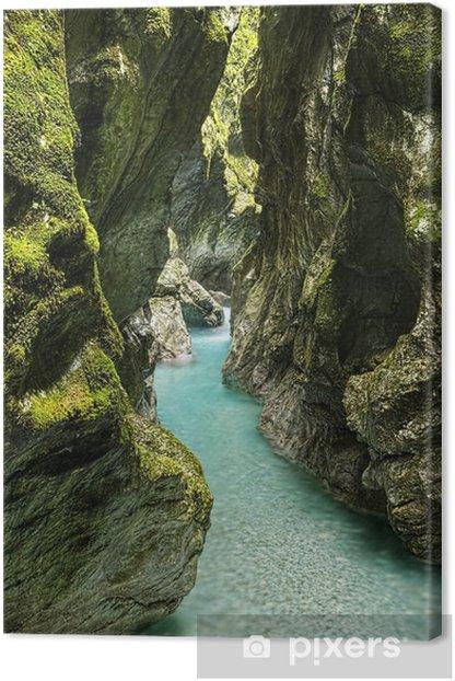 Tableau sur toile River Canyon - Europe