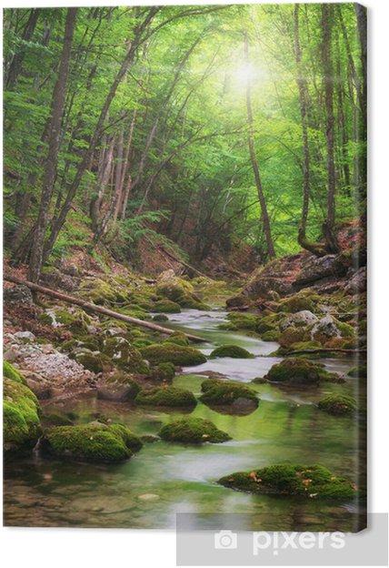 Tableau rivière et foret 1 tableaux sur toile riviere au fond de la foret de montagne