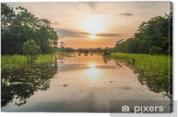 Tableau sur toile Rivière dans la forêt amazonienne, au crépuscule, au Pérou, en Amérique du Sud - Brésil