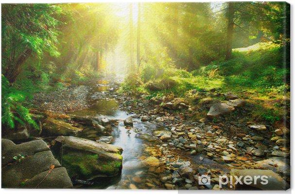 Tableau sur toile Rivière de montagne tranquille dans une forêt verte - Thèmes