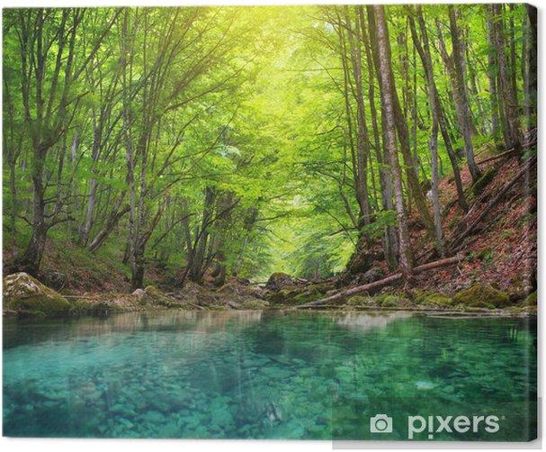 Tableau sur toile Rivière en forêt de montagne. - Thèmes