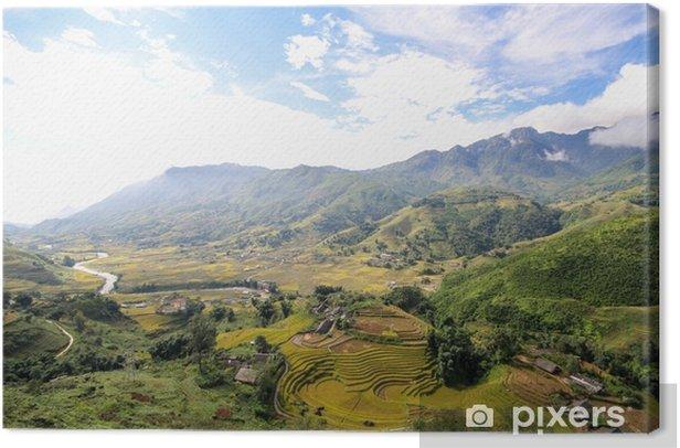Tableau sur toile Rizières en terrasses de sapa, district de sapa, province de lao cai, nord-ouest du vietnam - Paysages