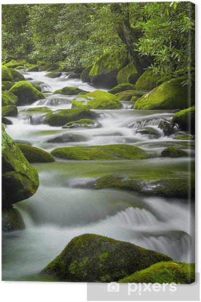 Tableau sur toile Roaring Fork Creek, Smoky Mountains National Park - Eau