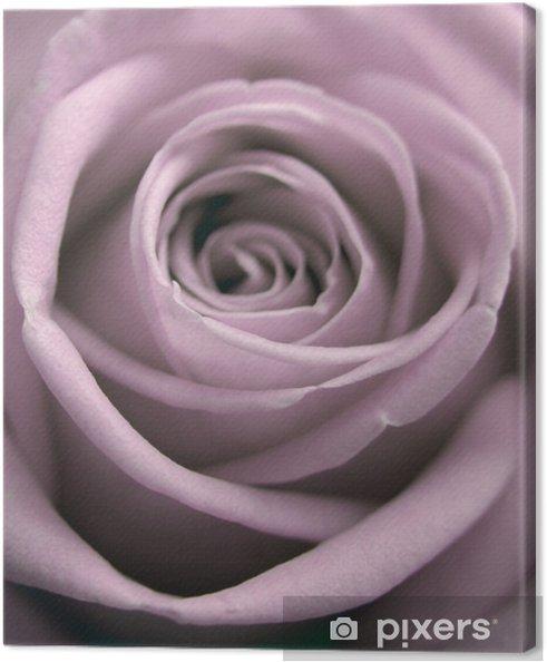 Tableau sur toile Rose pastel - Thèmes