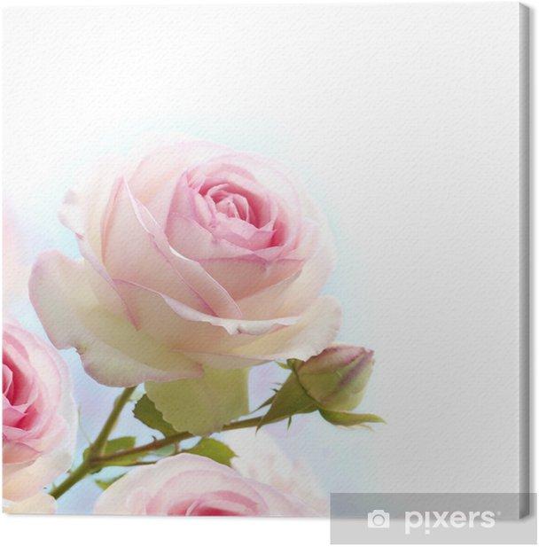 Tableau sur toile Rose rose sur fond blanc bleu - Thèmes