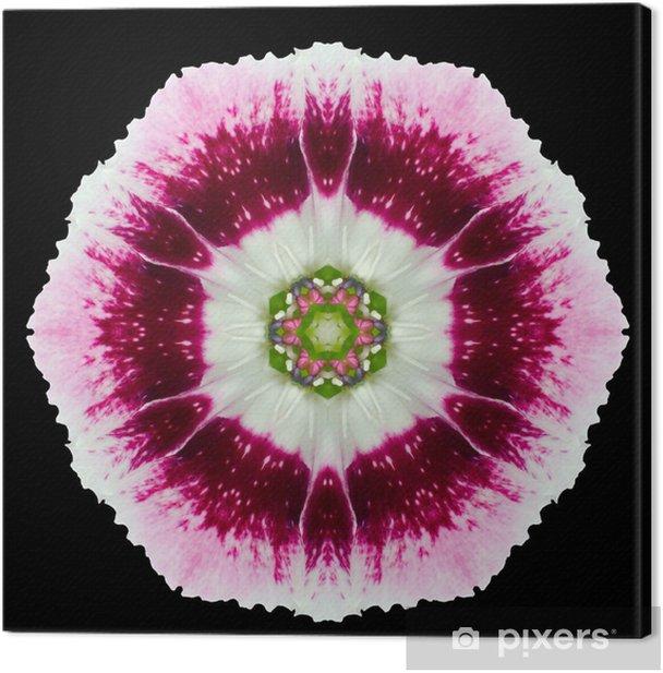 Tableau sur toile Rose, Violet, Mandala de kaléidoscope de fleur d'isolement sur le noir - Fleurs