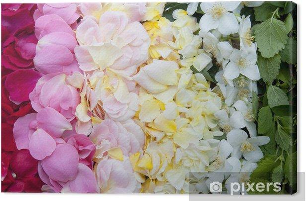 Tableau sur toile Rosenblütenblätter - Fleurs