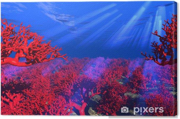 Tableau sur toile Rouge corail sous l'eau - Récif de corail