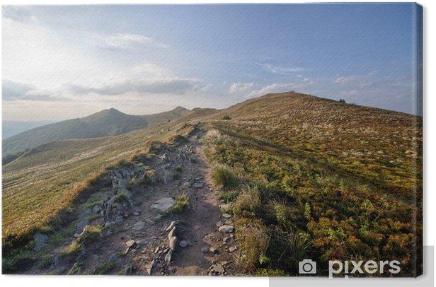 Tableau sur toile Route Stony dans les montagnes - Montagne