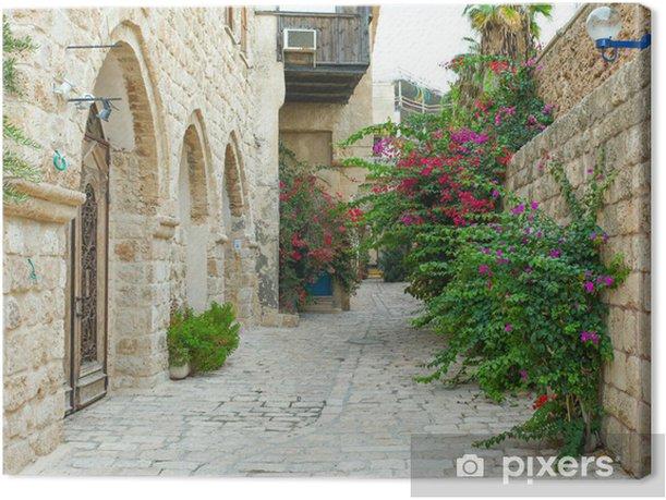 Tableau sur toile Ruelle typique de Jaffa, Tel Aviv - Israël - Thèmes