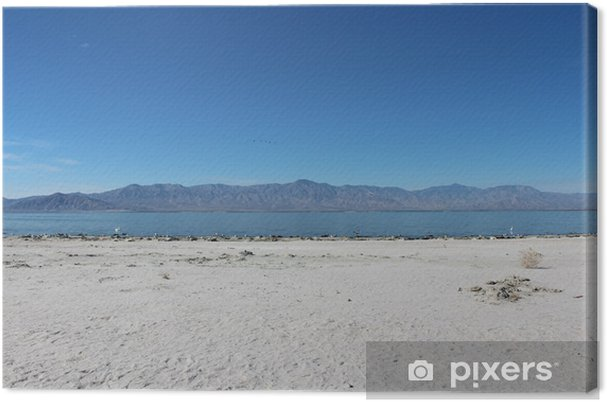 Tableau sur toile Salton Sea en Californie Paysage - Amérique