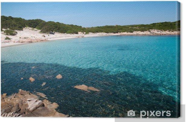 Tableau sur toile Sardaigne, Italie: la plage de Cala Andreani sur l'île de Caprera - Eau
