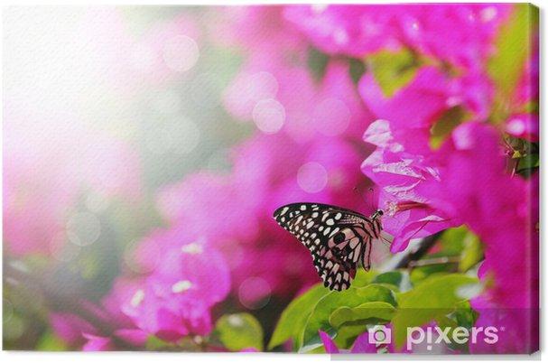 Tableau sur toile Scène du matin Majestic avec papillon alimentation de nectar d'une bou - Thèmes