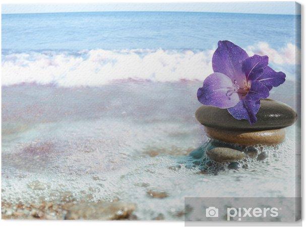 Tableau sur toile Sea still-life - Santé et médecine