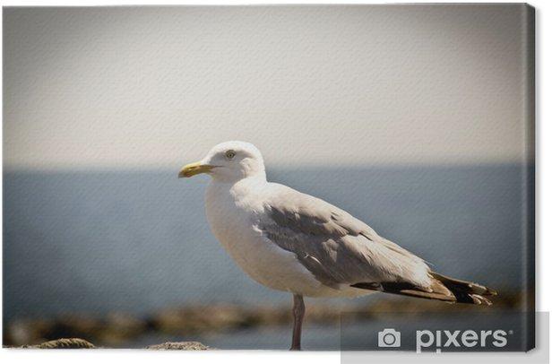 Tableau sur toile Seagull 1305 - Vacances