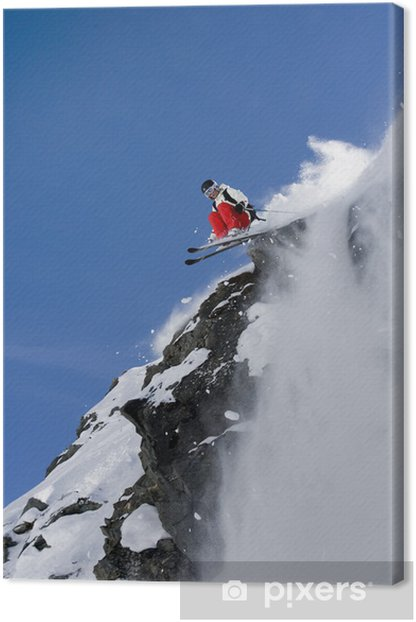 Tableau sur toile Ski freeride - Le ski