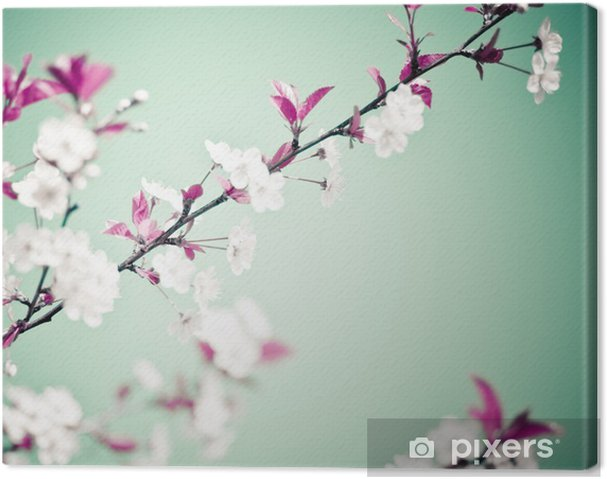 Tableau sur toile Spring Background floral. - Thèmes