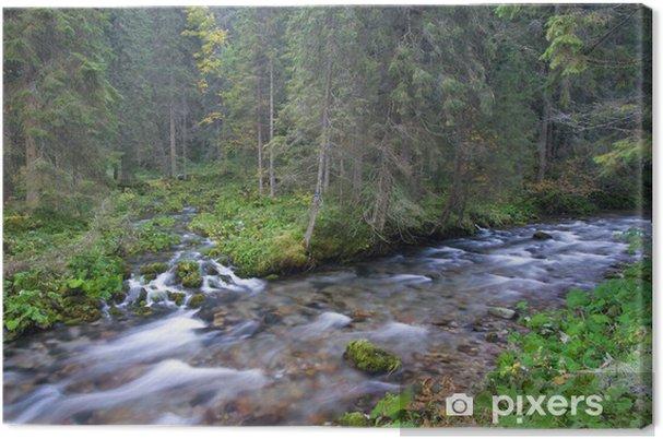 Tableau sur toile Streams VTT dans la forêt - Eau