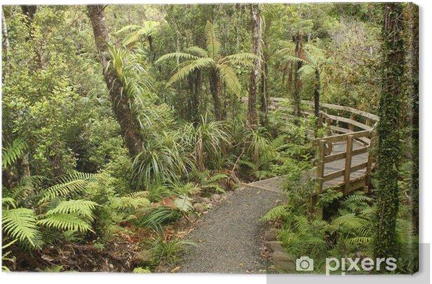 Tableau sur toile Suivre à travers la forêt tropicale en Nouvelle-Zélande - Thèmes