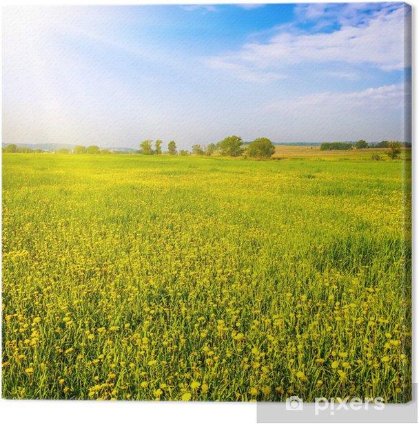 Tableau sur toile Summer landscape - Saisons