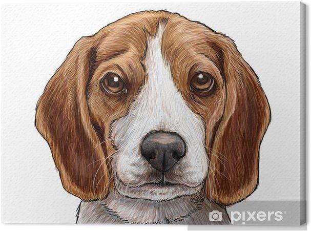 Tableau Sur Toile Tête De Chien Chiot Beagle Dessiner Et Peindre Illustration Sur Fond Blanc