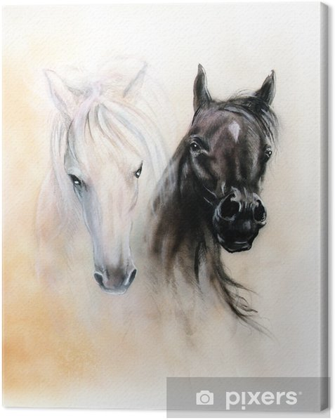Tableau sur toile Têtes de cheval, deux spiritueux de cheval noirs et blancs, beaux détails - Animaux