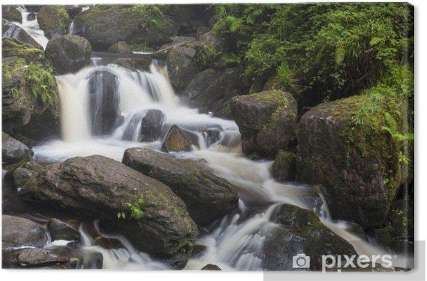 Tableau sur toile Torque Wasserfall im Killarney Nationalpark - Europe