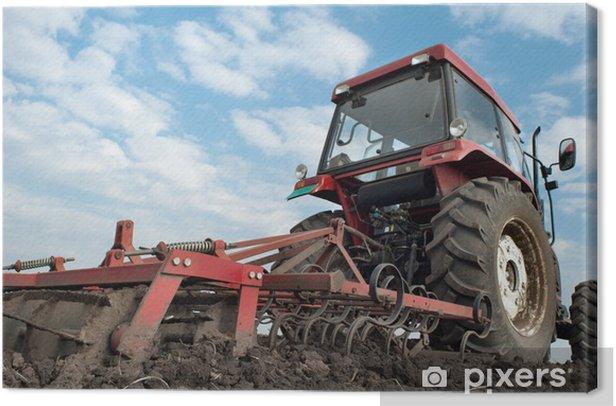 Tableau sur toile Tracteur labourant les champs - Agriculture