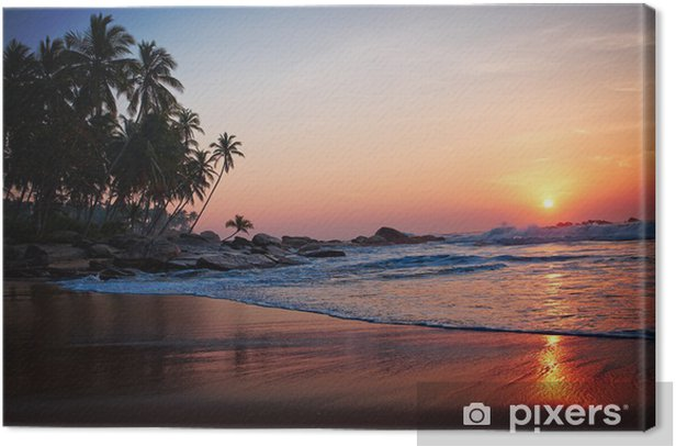 Tableau sur toile Tropical beach - Thèmes