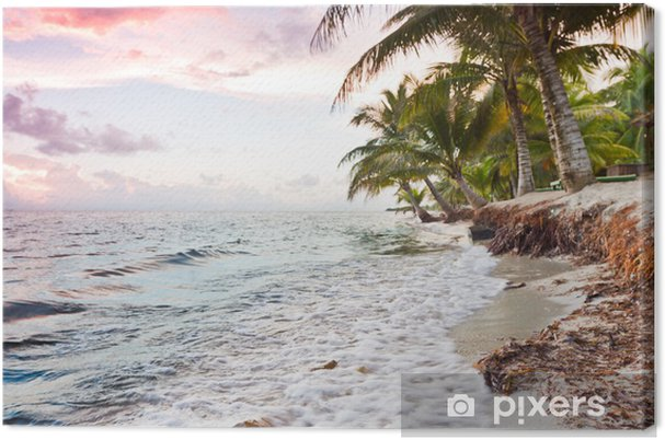 Tableau sur toile Tropical beach - Eau