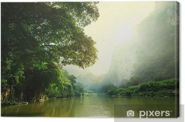 Tableau sur toile Tropical river - Asie