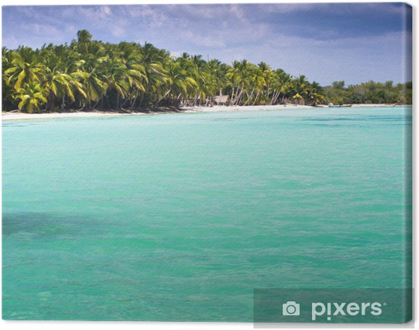 Tableau sur toile Tropical sea - Eau