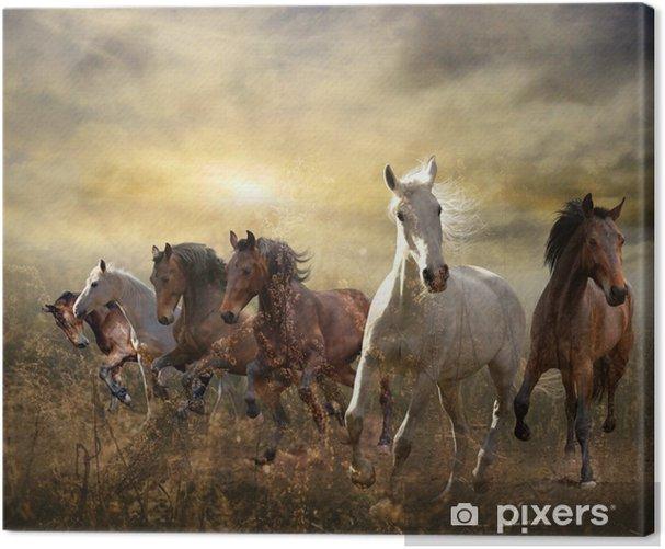 Tableau sur toile Troupeau de chevaux au galop libre au coucher du soleil - Thèmes