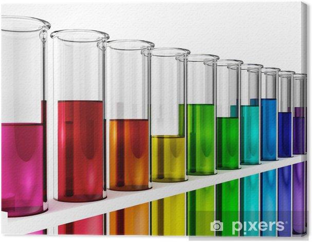 Tableau sur toile Tubes à essai - rainbow - couleurs - couleur - Accessoires