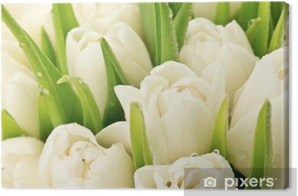 Tableau sur toile Tulipany - Thèmes