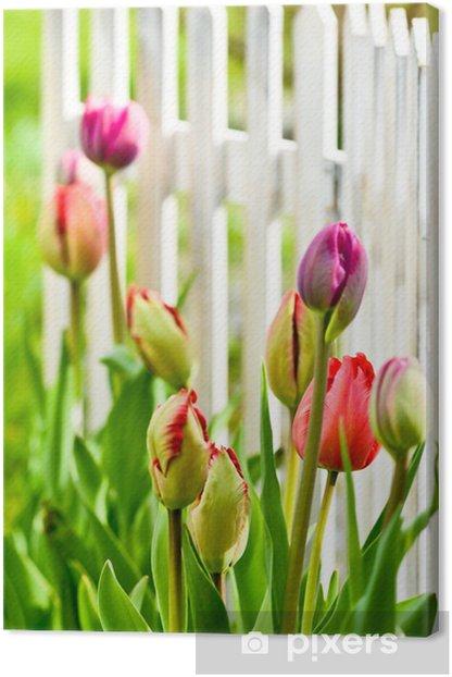 Tableau sur toile Tulipes dans la cour avant - Thèmes