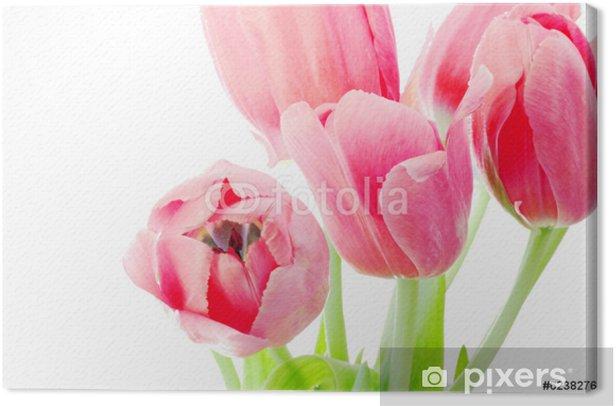 Tableau sur toile Tulipes roses bouquet - Saisons